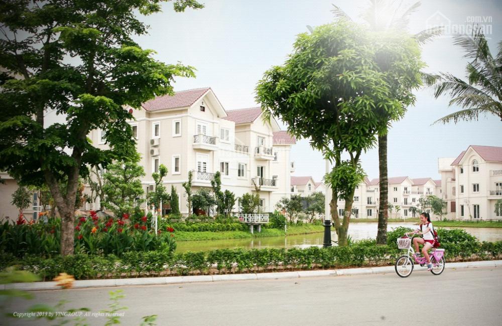 Chính chủ bán biệt thự Vinhomes Riverside Anh Đào AD03, 286m2, giá tốt nhất thị trường, MTG 5874263