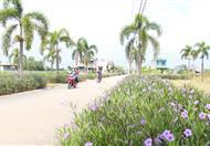 Cơn sốt đất nền, đất dự án tại khu đô thị Phúc Giang