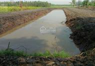 Cần tiền bán gấp đất Phước Hiệp Củ Chi. diện tích 2400m2, cách Quốc Lộ 22 1km, giá 680 triệu