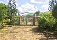 Cần bán BT vườn xã Hoà Ninh Long Hồ diện tích 2484 m2 liên hệ 0907136841