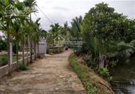 Bán đất Cẩm Thanh vị trí đẹp view Dừa, View Hồ và View Lúa DT 200m2, 650m2, 1000m2, 2500m2